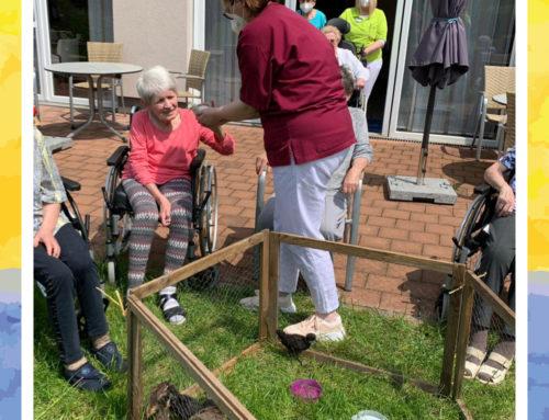 Aufregung im Garten vom Haus Edelberg Senioren-Zentrum Klarenthal